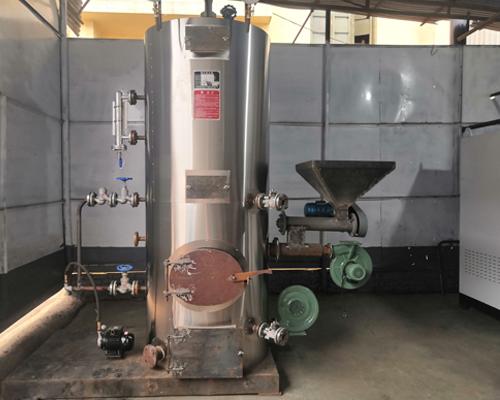 立式生物质蒸汽发生器